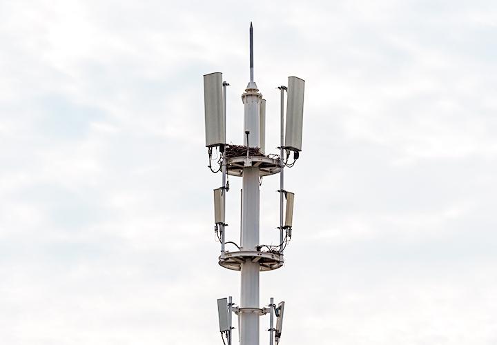 电信网络连接器